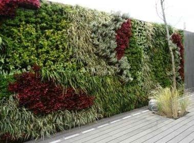 Características de las fachadas ecológicas con cubiertas vegetales